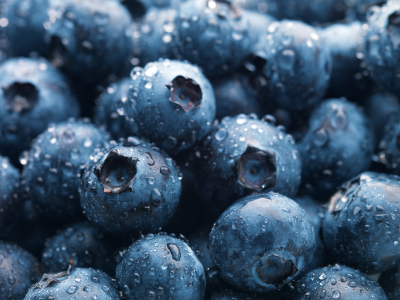 Blueberries For Your Brain