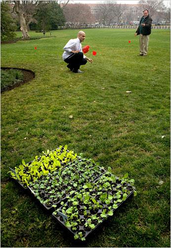 Obama's Garden Planning