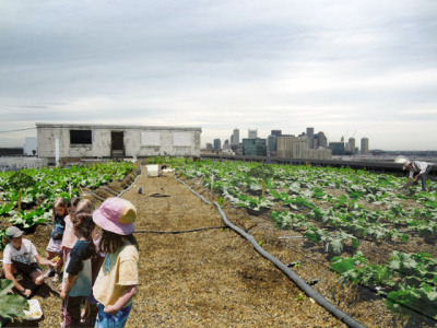 Two Visionaries Tackle Climate Change With Rooftop Farms